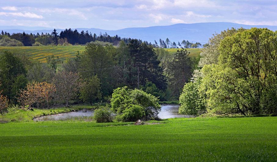 Farma Loužná